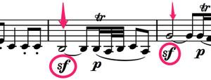 Eineklinenachtmusik_vn21