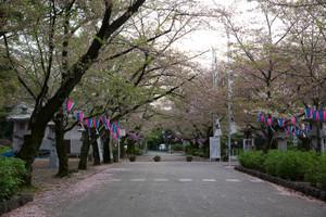 Gokoku2
